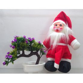 Santa Claus with Christmas artificial Plant