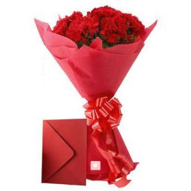 Carnations N Greeting Card
