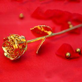 Golden Valentine Rose
