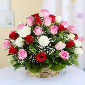 Mixed 20 Roses