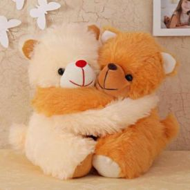 Hug day teddy