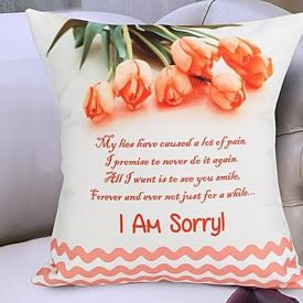 Sorry Cushion