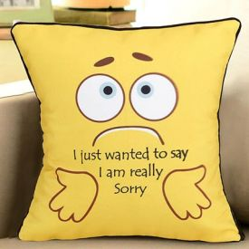 Say Sorry Cushion