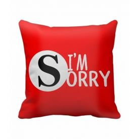 I Am Sorry Cushion