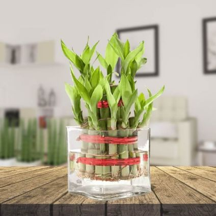 mix flowers & 2 layer bamboo with vase