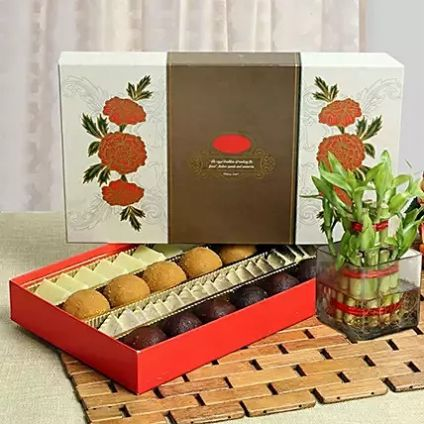 Mixed Sweets With Bamboo Plant