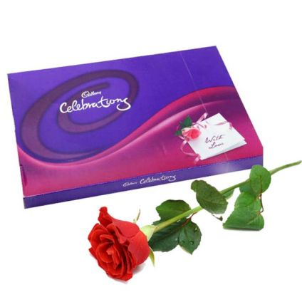 1 red rose and cedbury celebration