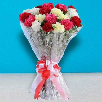Bouquet of Mixed Carnations