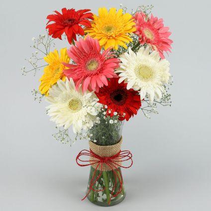 10 Mixed Gerbera with Vase