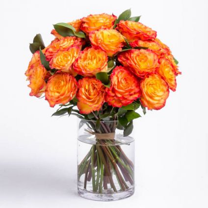 Bunch of 36 orange roses