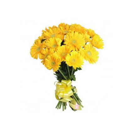 20 Yellow Gerbera