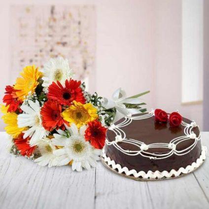 Mixed Gerbera With Truffle Cake