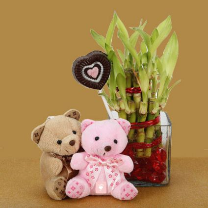 Lucky bamboo plant in vase and 2 small teddy