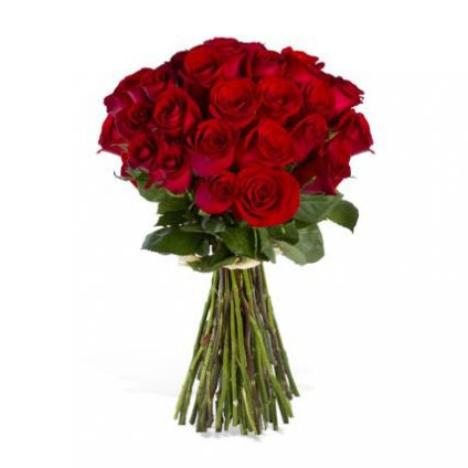 Bunch of 24 luxury red roses,