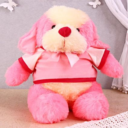 Customized Teddy : Soft Animals
