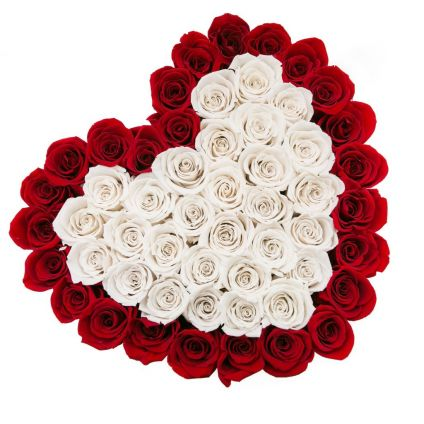 50 Heart shape white and red roses
