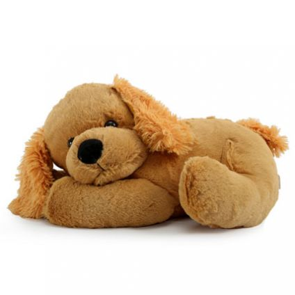 Adorable Cuddly Puppy