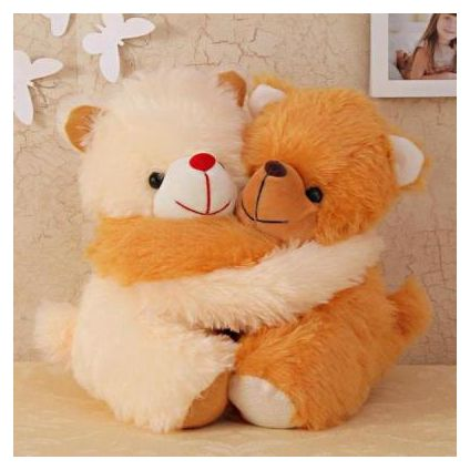 Hug day teddy