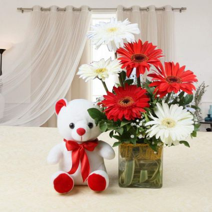 Mixed Gerbera N Teddy