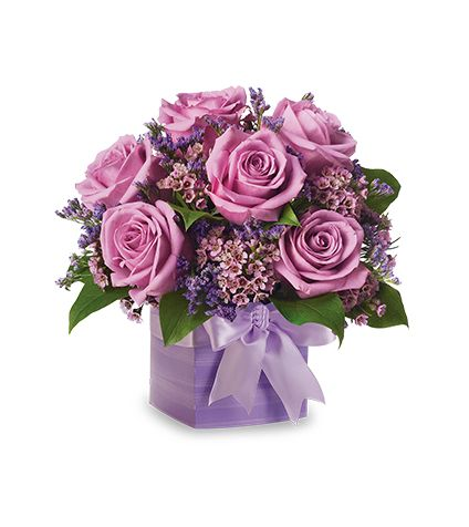6 Purple rose with vase