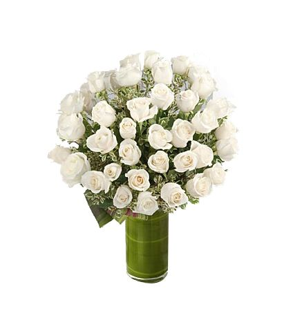 70 white roses with vase