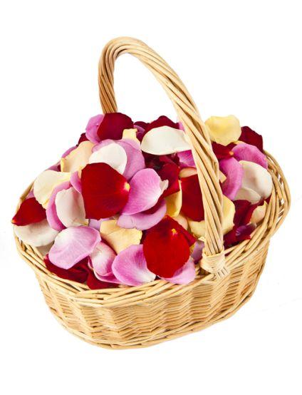 Best Flowers Petals
